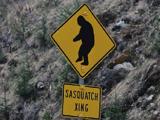All About Bigfoot