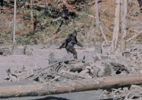 Channeling Bigfoot, Part Two