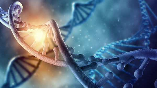 Spiritual DNA and How to Change It