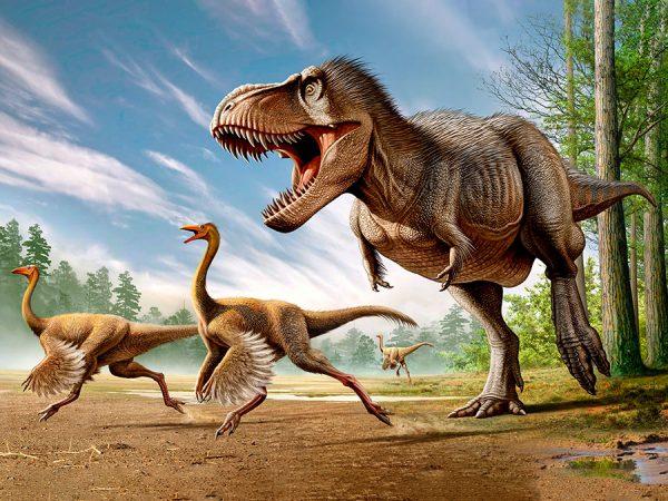 Erik Shares Dinosaur Secrets!