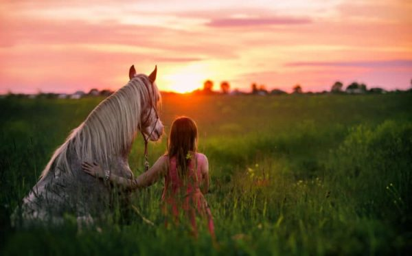 The Spiritual Magic of Horses