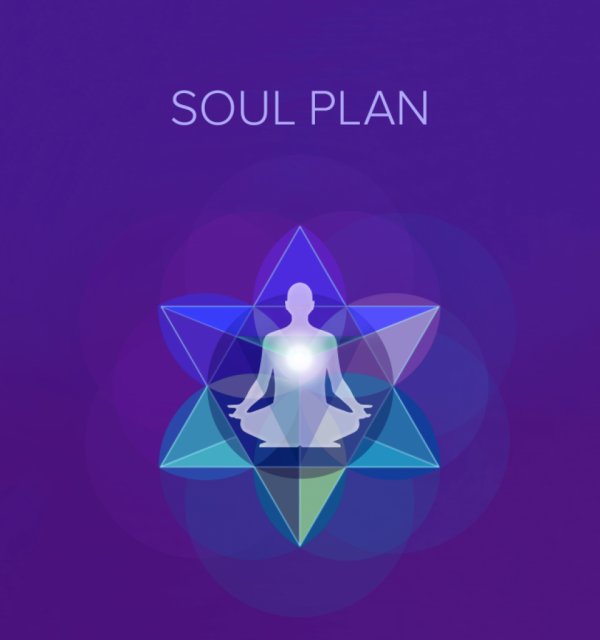 Professor Erik's Virtual Classroom: The Soul Plan